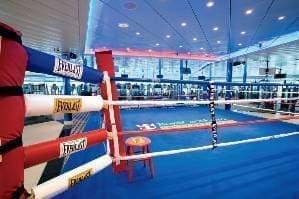 Ring de boxe grandeur nature